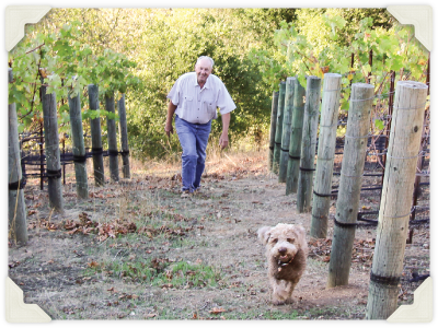 George and Sophie walking in the vineyard.